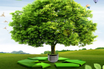 environmental-management