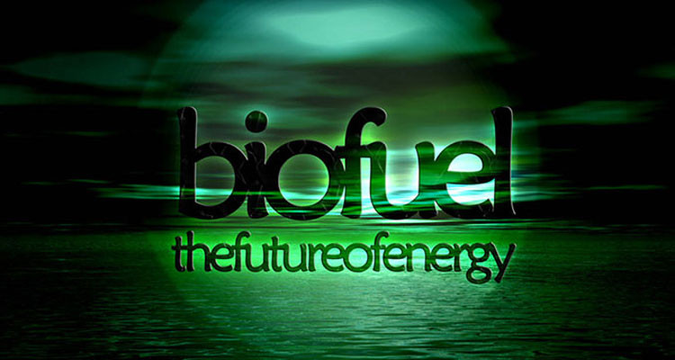 biofuels-from-bacteria