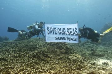 Apo Island Ocean Defender tour,  Greenpeace Esperanza