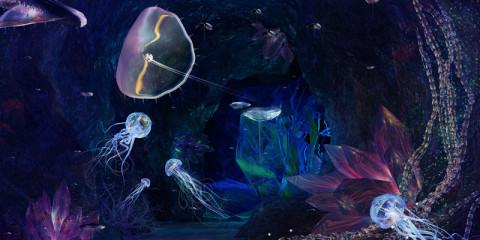 deep-sea-featured
